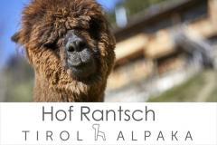 Singles Kitzbhel, Kontaktanzeigen aus Kitzbhel bei Tirol bei